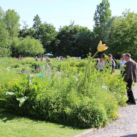 Jardin des plantes sauvages du CBNBL