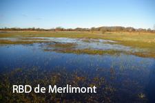 RBD de Merlimont